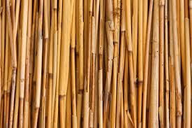 фото фанеры из бамбука